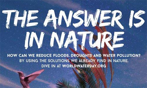 dia mundial aigua