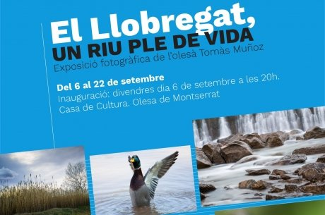 """Cartell de l'exposició """"El riu Llobregat: un riu ple de vida"""""""